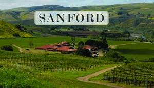 sanford vineyard