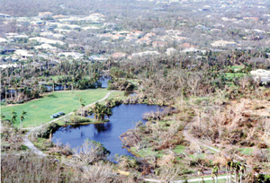 Hurricane Andrew - Panorama of Fairchild