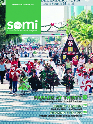 SOMIMag-Vol8-Dec-Jan13-Cover-2