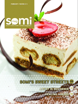 SOMIMag-Vol8_Feb-Mar13-Cover-3