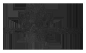 Buns_&_Buns_logo