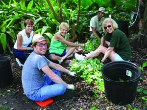Horticulture volunteers