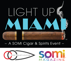 Light Up Miami Logos