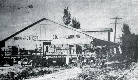 Dorn-Bros.-1917