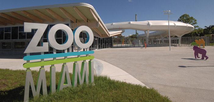 AT ZOO MIAMI – New Everglades Exhibit