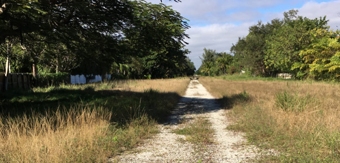 RAILS TO TRAILS – Publisher's Perspective